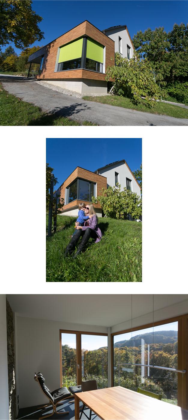 PS Vorlage_Haus K_wolf2